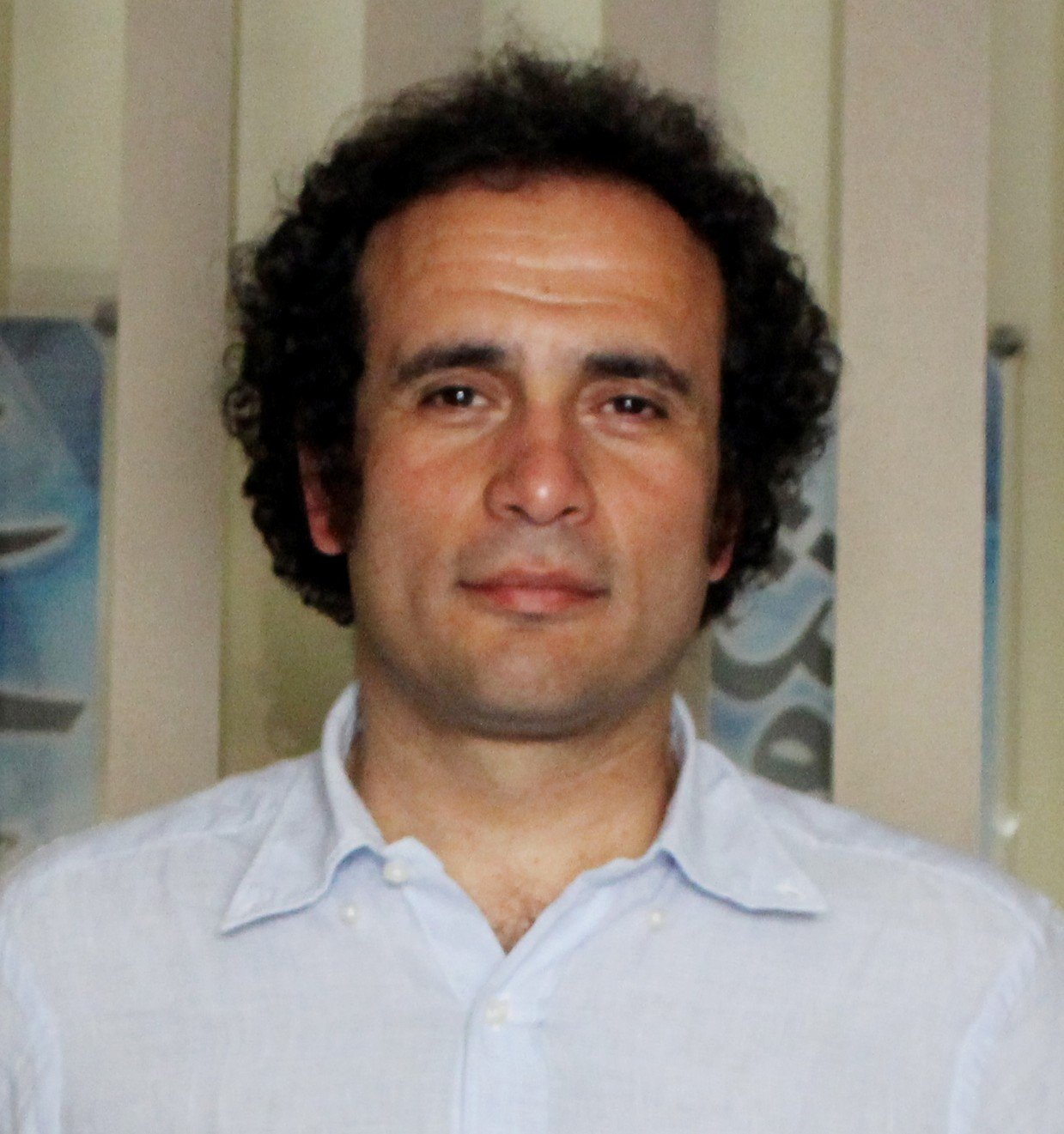 الدكتور عمرو حمزاوى