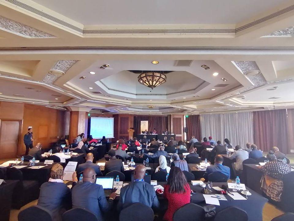 اجتماع الشبكة الأفريقية للمؤسسات الوطنية لحقوق الإنسان - القاهرة