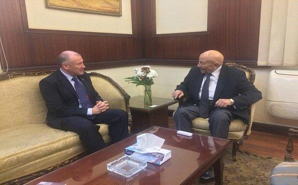 """رئيس """"القومي لحقوق الإنسان"""" يستقبل سفير استراليا"""