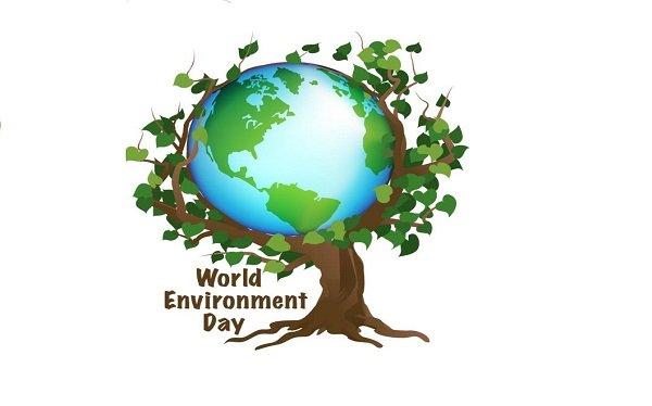 """رئيس """"القومي لحقوق الإنسان :"""" الحق فى بيئة نظيفة هو حق أصيل لكل إنسان"""