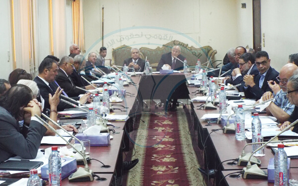 رئيس القومي لحقوق الإنسان يستقبل سفيرة بلجيكا بالقاهرة