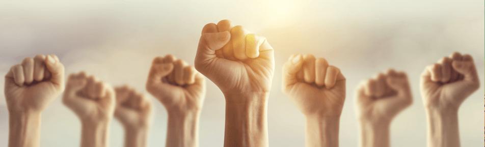 هدفنا: تعزيز حقوق الإنسان في مصر